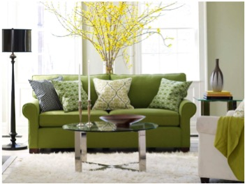 Home Caprice - Green Living Room Ideas