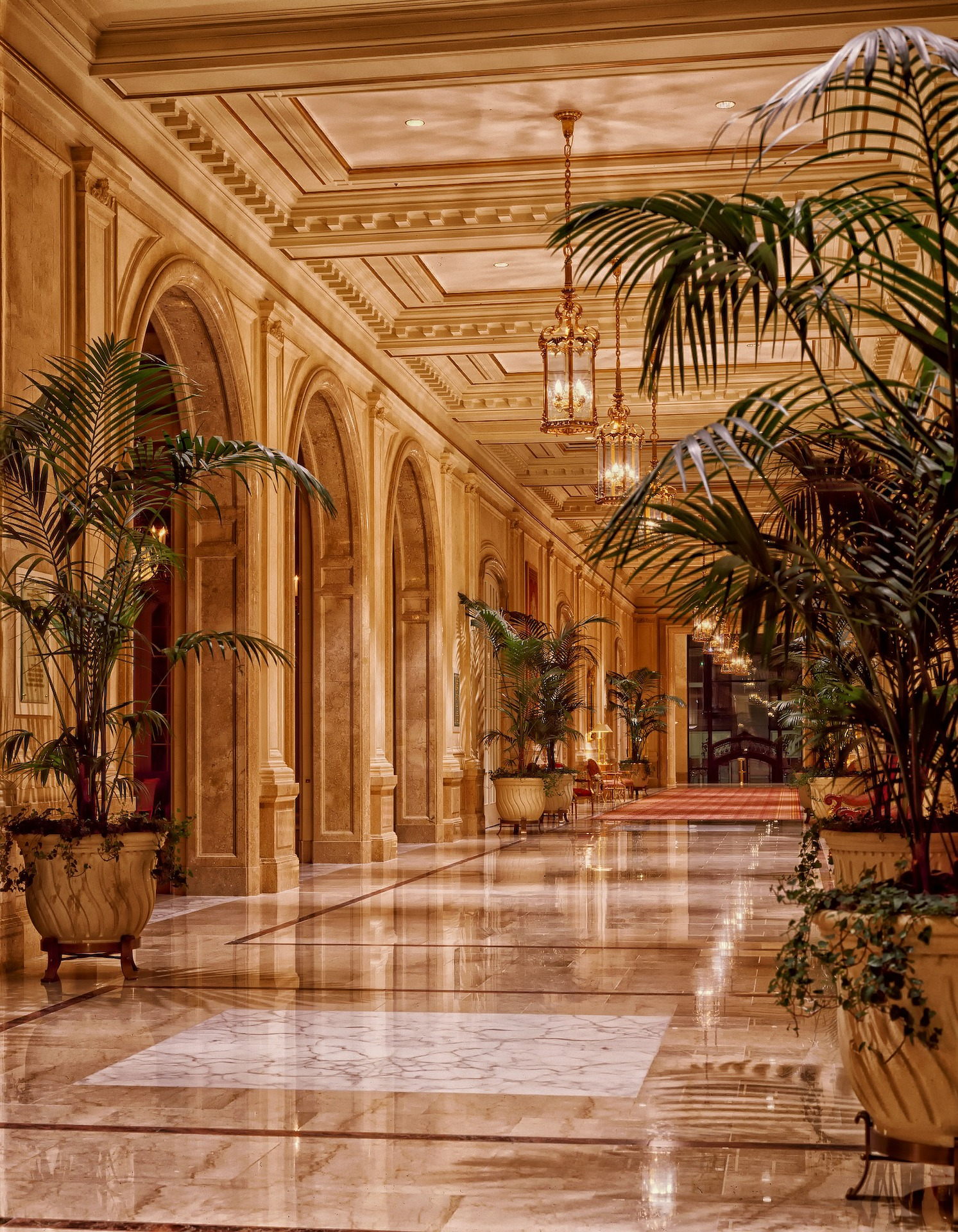 Hotel lobby, Hotel décor, hallway, greenery decoration