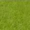 Green Felt (60F)