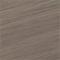 Venetian Nickel (17V)